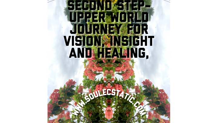 $22.00/ 7 Day Mind Vacation:  Second Step- Upper World Journey for Vision, Insight and Healing©