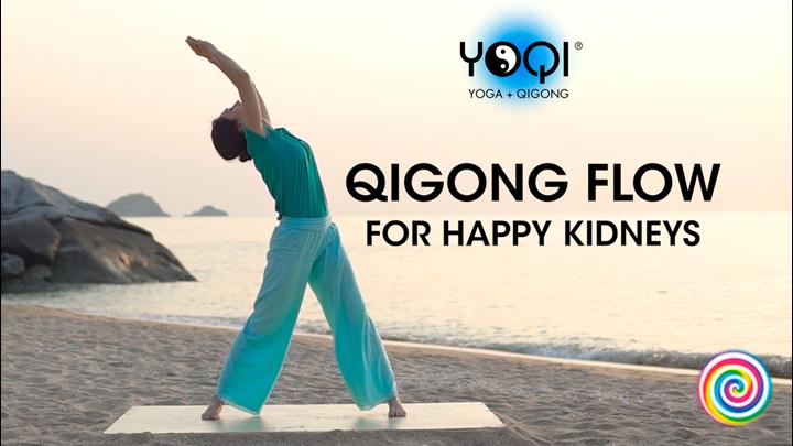 QIGONG FLOW FOR HAPPY KIDNEYS