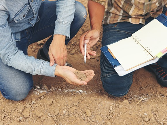 Soil Analysis and Recommendations