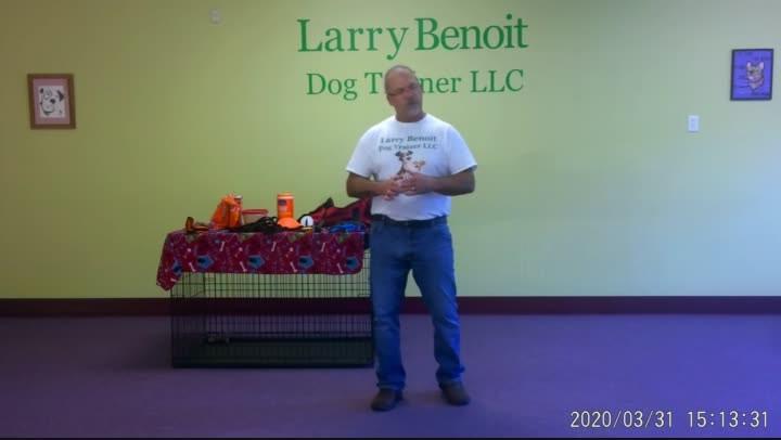 Introduction: Basic Dog Training Tools