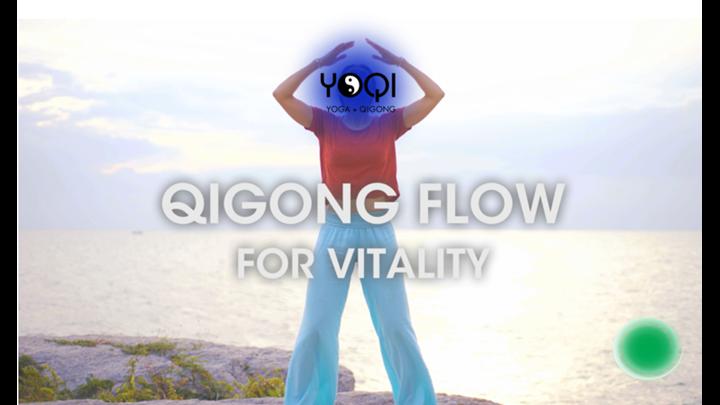 VITALITY FLOW