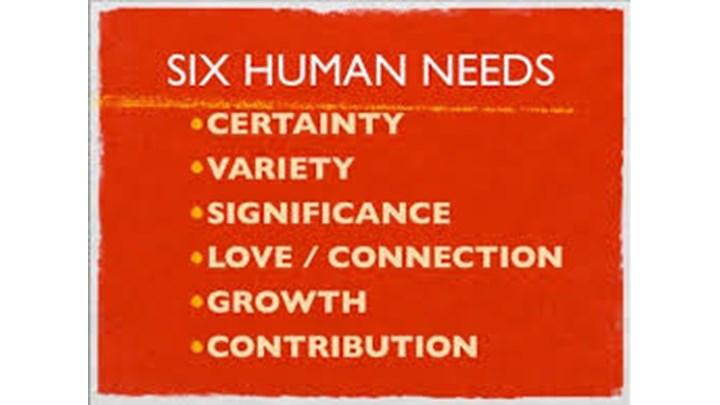 The 6 Human Needs