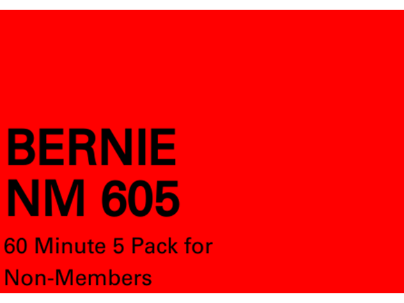 Bernie NM 5 pack 60 minute sessions