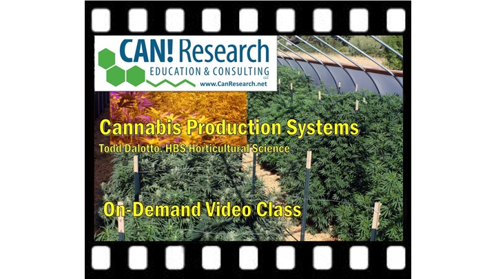Cannabis Production Systems class