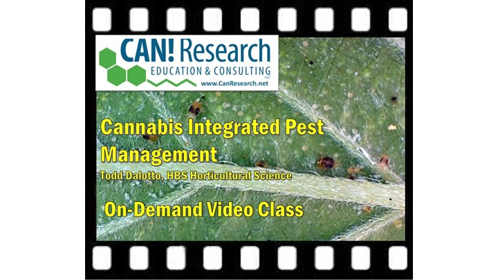 Cannabis Integrated Pest Management class