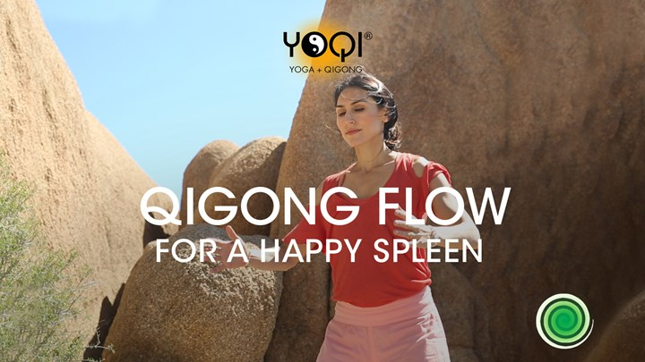 NO MUSIC- QIGONG FLOW FOR A HAPPY SPLEEN
