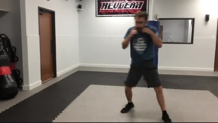 Front Groin Kick/Hammerfist Down/Knees