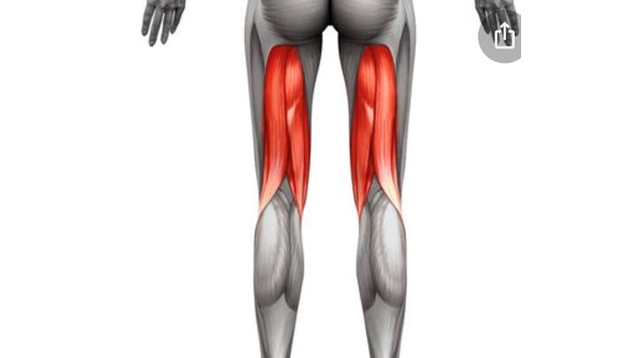 Hamstring Strain Strengthening