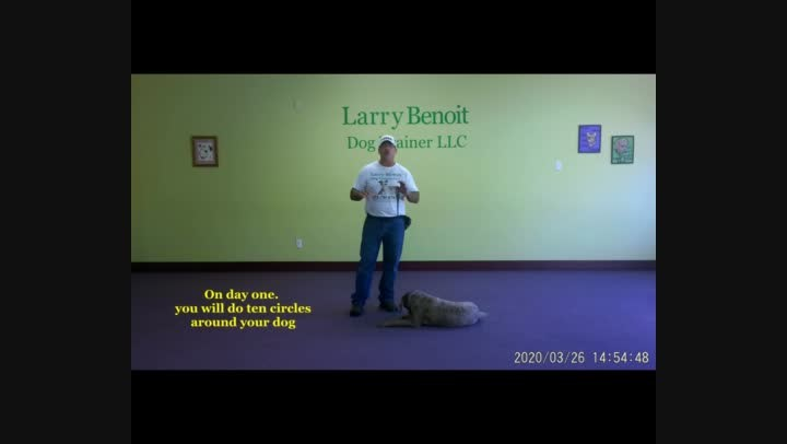 Basic Dog Obedience Wk. 3