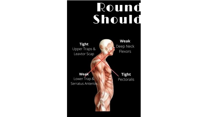 Rounded Shoulders