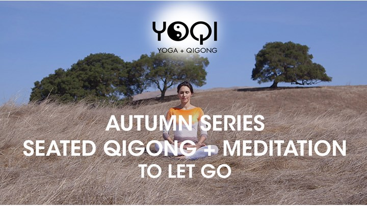 AUTUMN SERIES: Seated Qigong + Guided Meditation