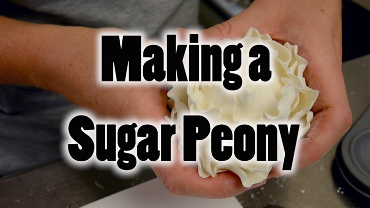 Making a Sugar Peony
