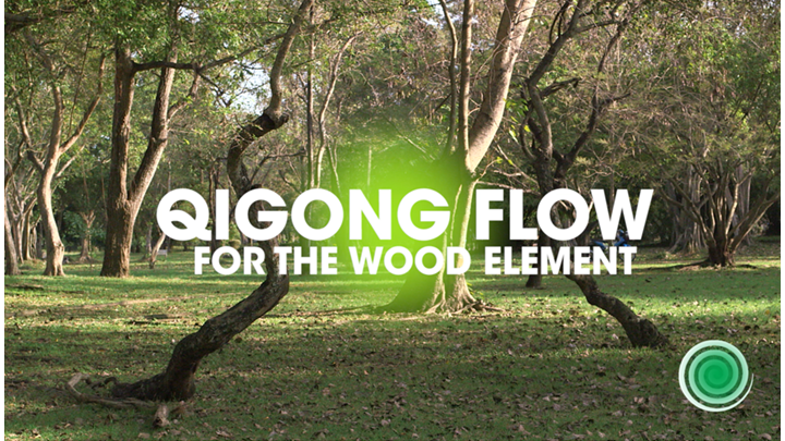 QIGONG FOR THE WOOD ELEMENT