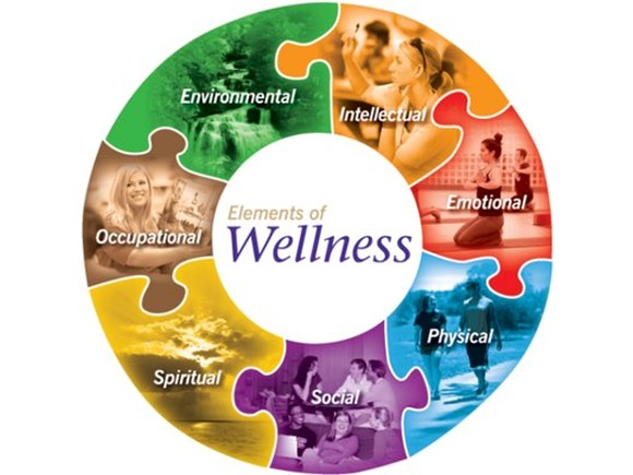 The Ultimate Holistic Wellness Package