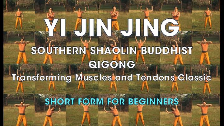 YI JIN JING (SHORT FORM)